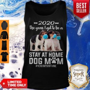 Top 2020 The Year I Got To Be A Stay At Home Pocket Beagle Dog Mom Quarantine Tank Top