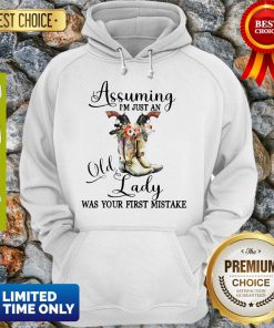 Beautiful Shoes Assuming Im Just An Old Lady Was Your First Mistake Hoodie