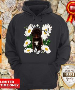 Official Spanish Water Dog Daisy Flower Classic Hoodie
