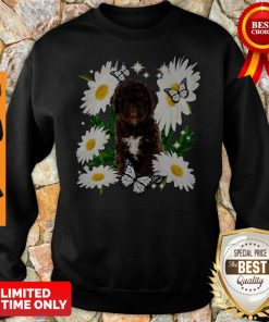 Official Spanish Water Dog Daisy Flower Classic Sweatshirt