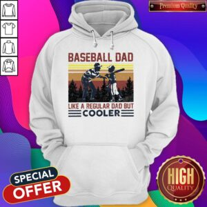 Baseball Dad Like A Regular Dad But Cooler Vintage Hoodie