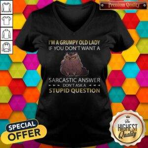 Cat I'm A Grumpy Old Lady If You Don't Want A Sarcastic Answer Don't Ask A Stupid Question V-neck