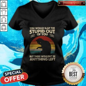 Cat You Would Slap The Stupid Out Of You But There Wouldn_t Be Anything Left Vintage V-neck