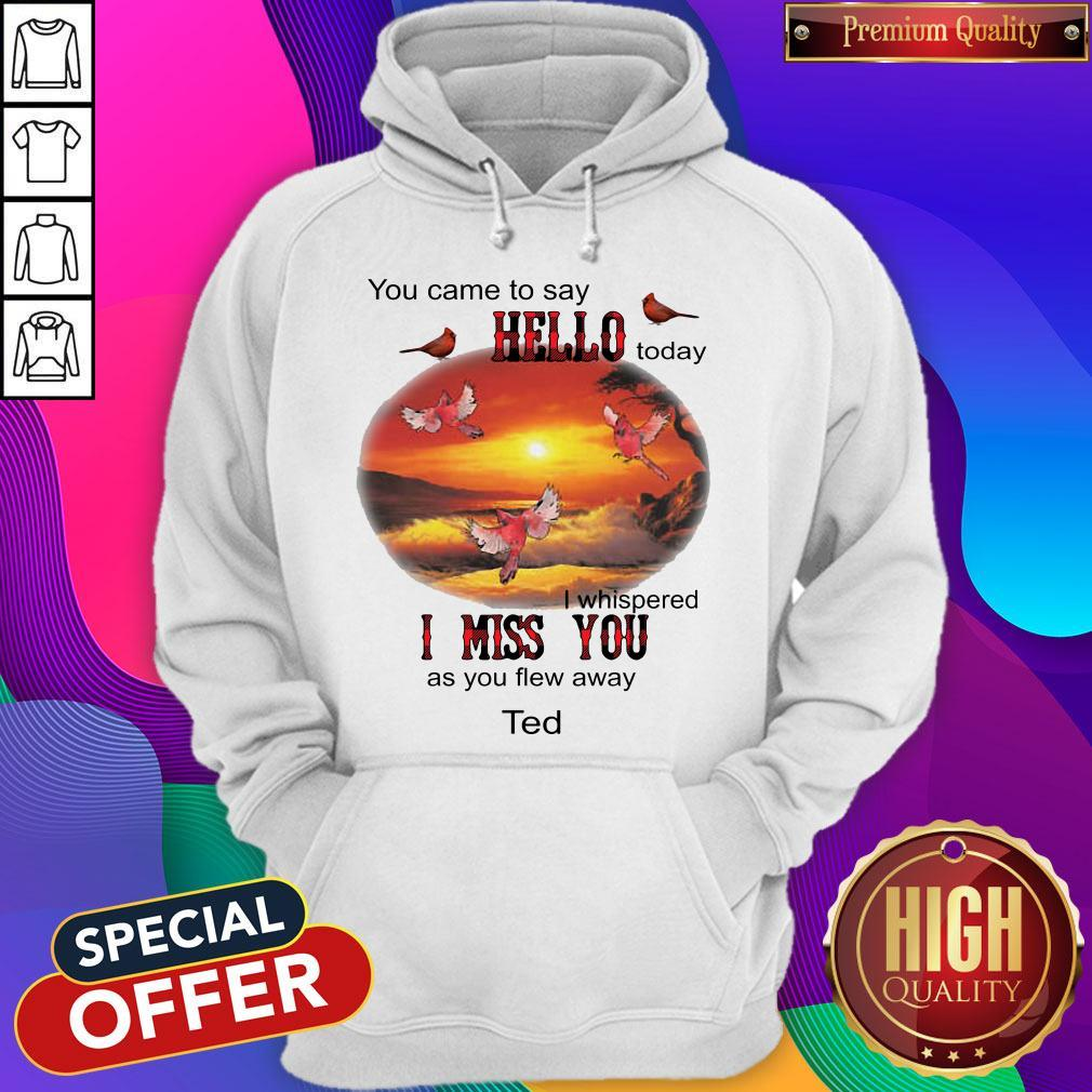 You Came To Say Hello Today I Whispered I Miss You As You Flew Away Ted Hoodie
