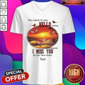 You Came To Say Hello Today I Whispered I Miss You As You Flew Away Ted V-neck