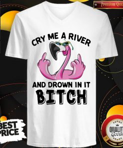 Flamingo Cry Me A River And Drown In It Bitch V-neck