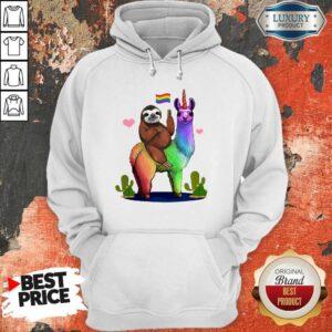 LGBT Sloth Riding A Llama Gay Lesbian Pride Hoodie