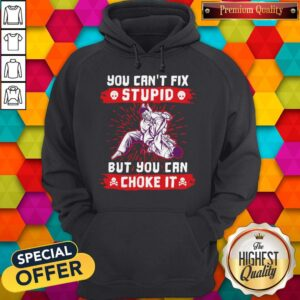 You Can't Fix Stupid But You Can Choke It Hoodie