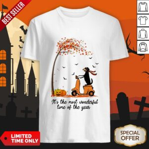 Halloween Dachshund Pumpkin It's The Most Wonderful Time Of The Year Shirt