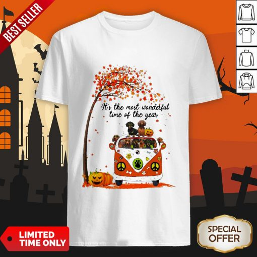 Halloween Dachshunds Pumpkin It's The Most Wonderful Time Of The Year Shirt