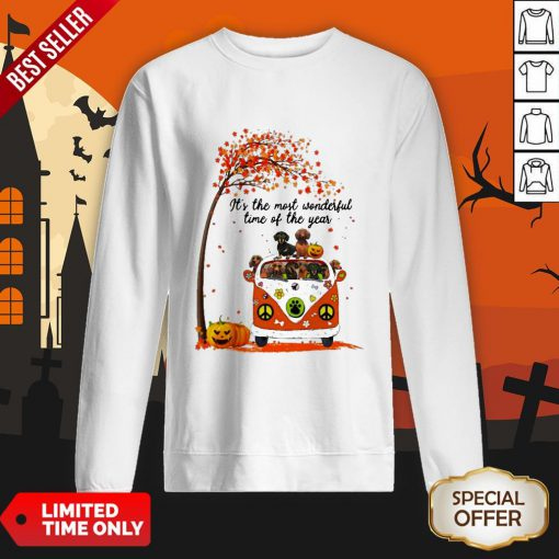 Halloween Dachshunds Pumpkin It's The Most Wonderful Time Of The Year Sweatshirt