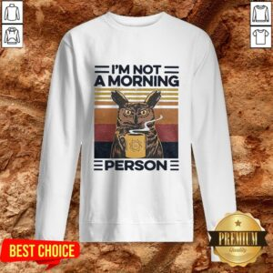 Love Owl Drink Coffee Im Not A Morning Person Sweatshirt