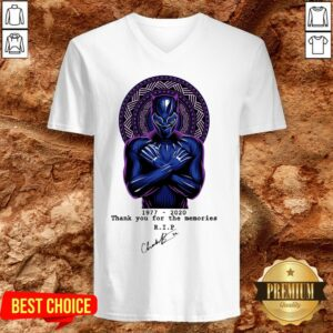 RIP Chadwick Boseman A Tribute To King T'challa The Black Panther V-neck