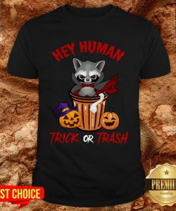 Hey Human Trick Or Trash Racoon Funny Trash Panda Candy Pumpkin Halloween Street Animal Shirt