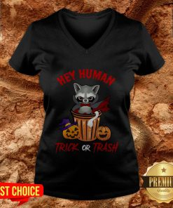 Hey Human Trick Or Trash Racoon Funny Trash Panda Candy Pumpkin Halloween Street Hey Human Trick Or Trash Racoon Funny Trash Panda Candy Pumpkin Halloween Street Animal V-neckAnimal V-neck
