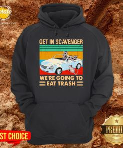 Get In Scavenger We're Going To Eat Trash Vintage Hoodie - Design By Potatotees.com