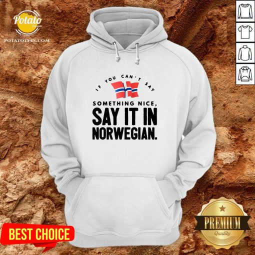 Good If You Can't Say Something Nice Say It In Norwegian Hoodie - Design By Potatotees.com