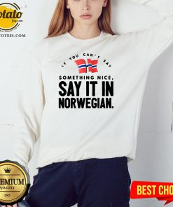 Good If You Can't Say Something Nice Say It In Norwegian Sweatshirt - Design By Potatotees.com