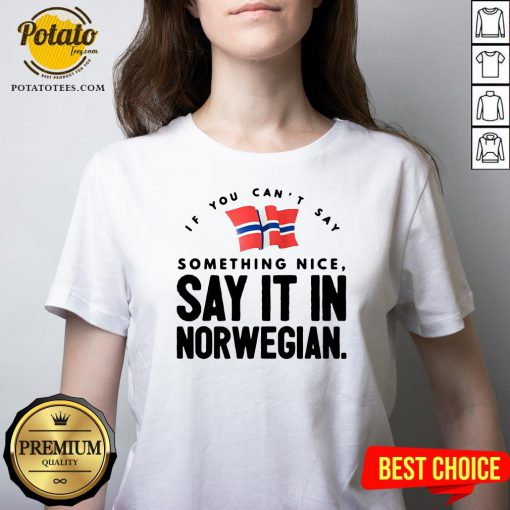 Good If You Can't Say Something Nice Say It In Norwegian V-neck - Design By Potatotees.com