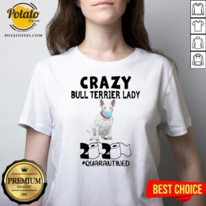 Nice Crazy Bull Terrier Lady 2020 Quarantined V-neck - Design By Potatotees.com
