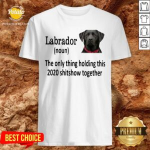 Good Labrador The Only Thing Holding This 2020 Shitshow Together Shirt - Design By Potatotees.com