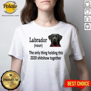 Good Labrador The Only Thing Holding This 2020 Shitshow Together V-neck - Design By Potatotees.com