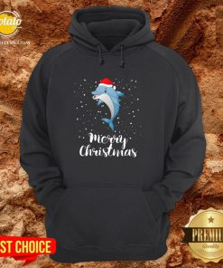 Official Dolphins Santa Reindeer Light Christmas Hoodie - Design By Potatotees.com