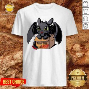Adopt This Dragon Shirt - Design by Potatotees.com