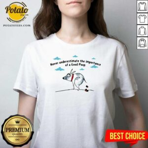 Never Underestimate The Importance Of A Good Poop V-neck - Design by Potatotees.com