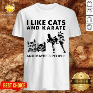 I Like Cats And Karate And Maybe 3 People Shirt