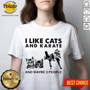 I Like Cats And Karate And Maybe 3 People V-neck