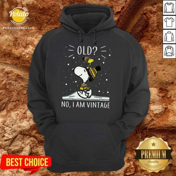 Snoopy And Woodstock Old No I Am Vintage Hoodie