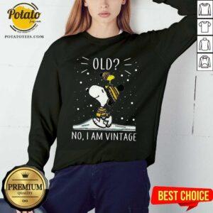 Snoopy And Woodstock Old No I Am Vintage Sweatshirt