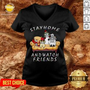 Pretty Pets Stay Home And Watch Friends Cartoon COVID-19 V-neck
