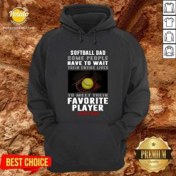 Softball Dad Some People Have To Wait Their Entire Lives To Meet Their Favorite Player Hoodie- Design By Potatotees.com