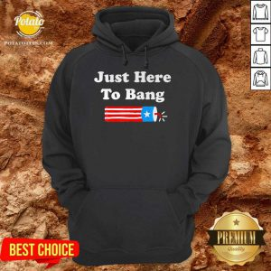 4th Of July 2021 Just Here To Bang Us 2021 Hoodie