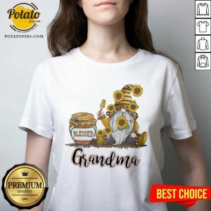 Apayprint Blessed Grandma Gnome Bee Personalized V-neck